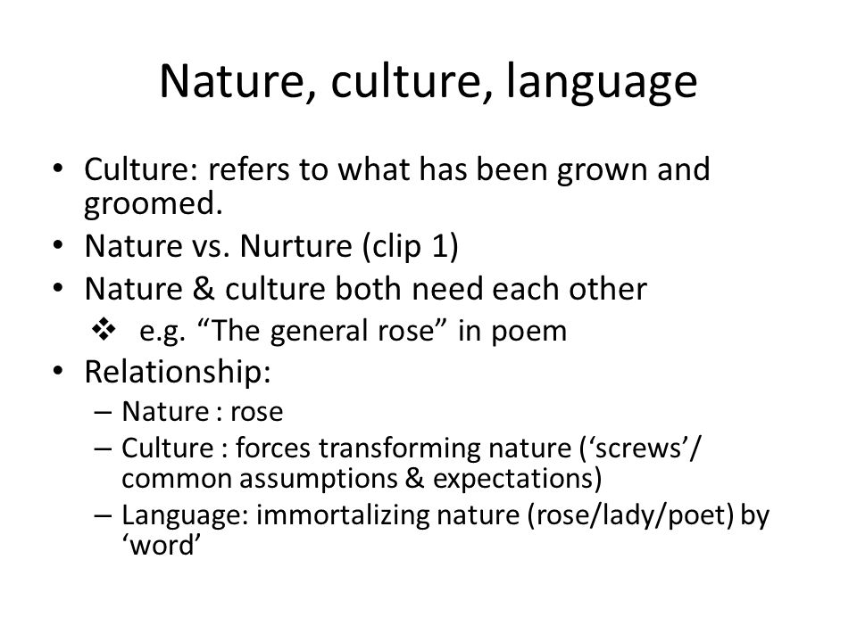 language and culture relationship pdf to word