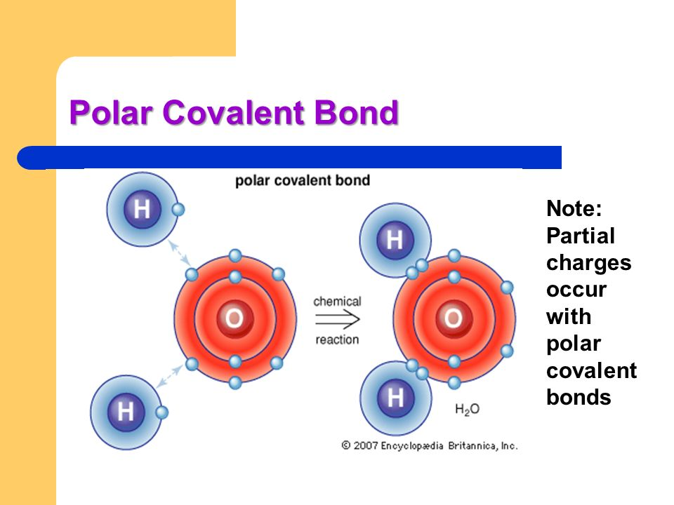 Polar Covalent Bond Note: Partial charges occur with polar covalent bonds