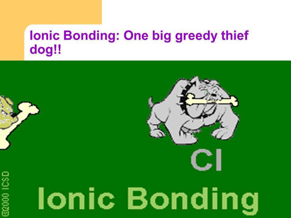 Ionic Bonding: One big greedy thief dog!!