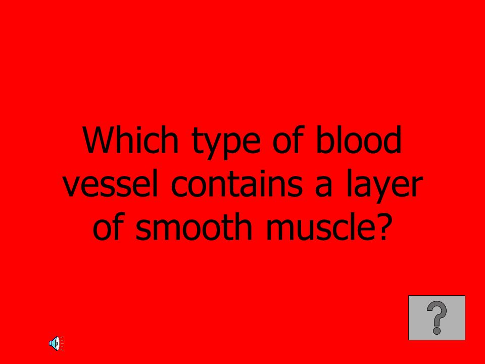 Which type of blood vessel contains a layer of smooth muscle
