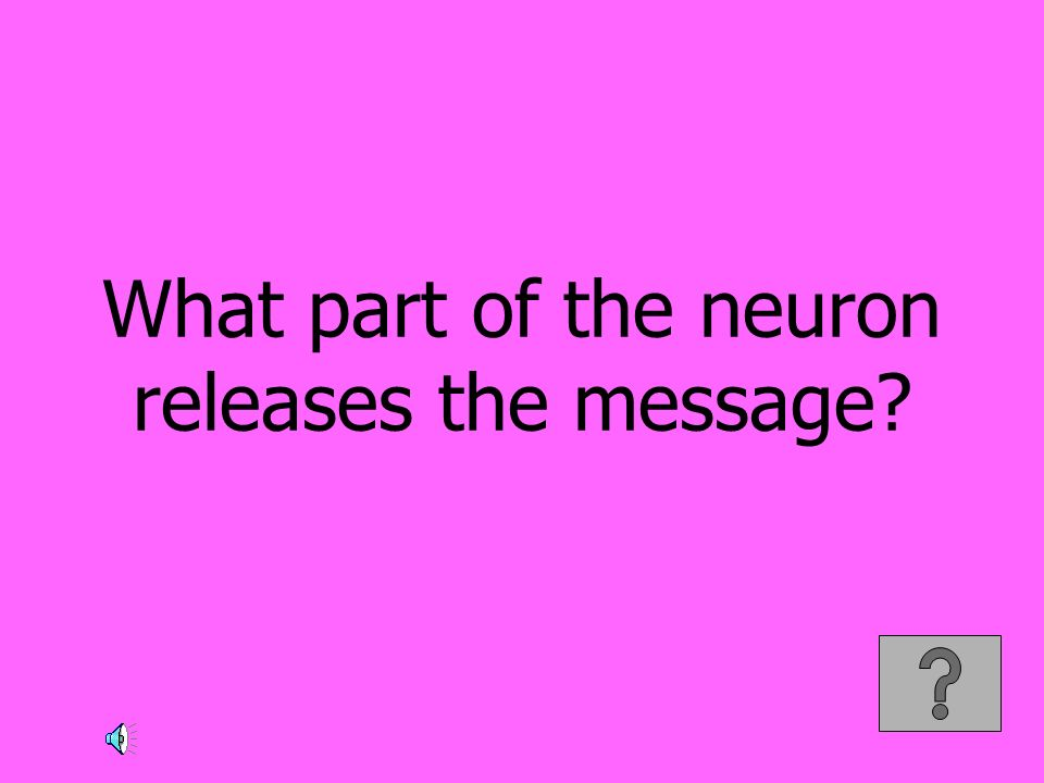 What part of the neuron releases the message