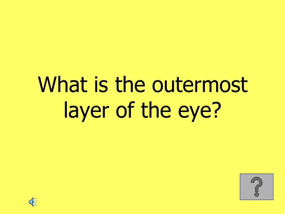 What is the outermost layer of the eye