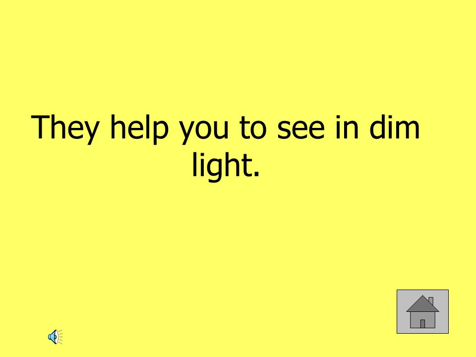 They help you to see in dim light.