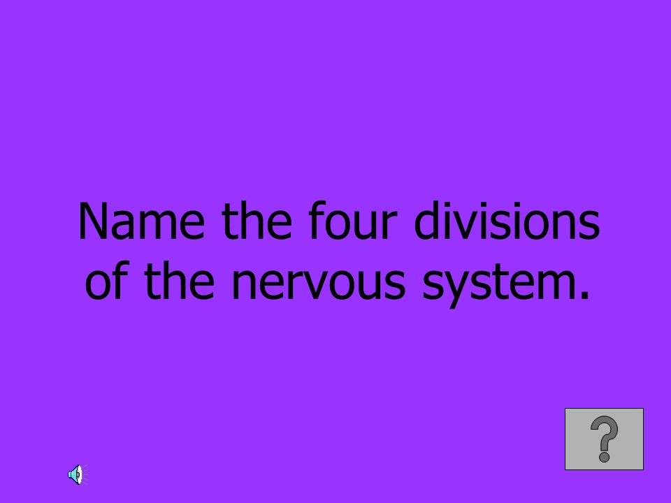 Name the four divisions of the nervous system.