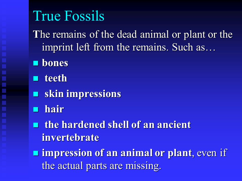 True Fossils The remains of the dead animal or plant or the imprint left from the remains. Such as…