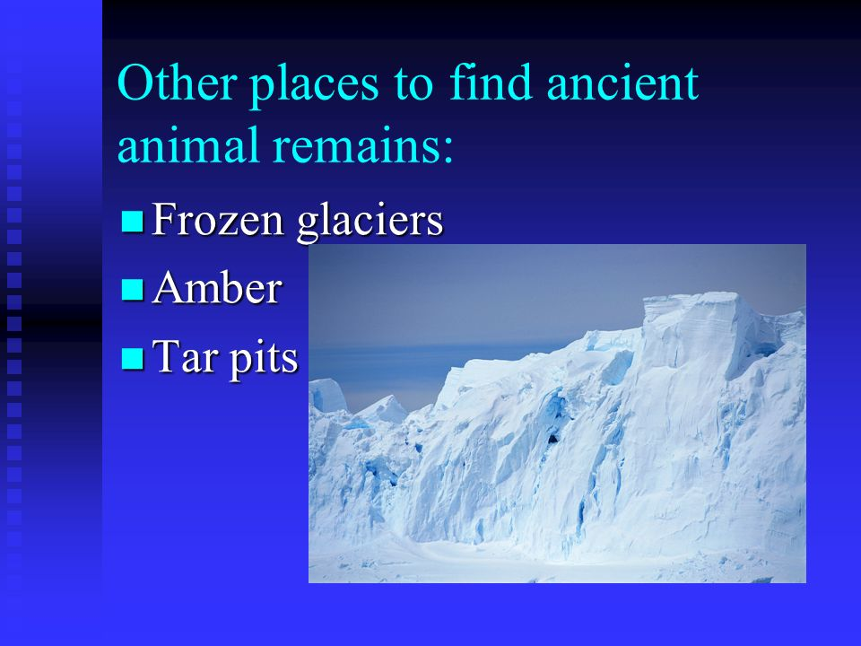 Other places to find ancient animal remains: