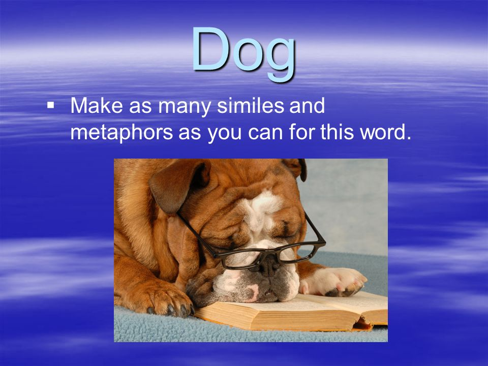 Dog Make as many similes and metaphors as you can for this word.