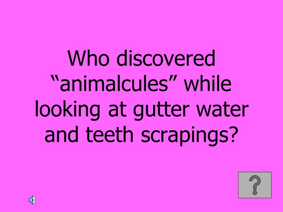 Who discovered animalcules while looking at gutter water and teeth scrapings
