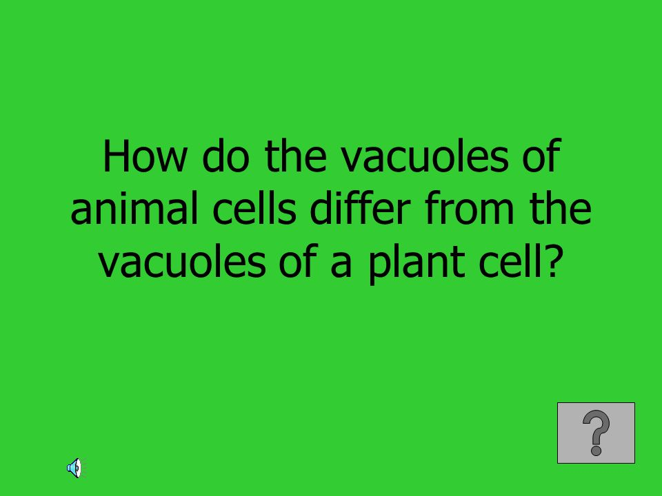How do the vacuoles of animal cells differ from the vacuoles of a plant cell