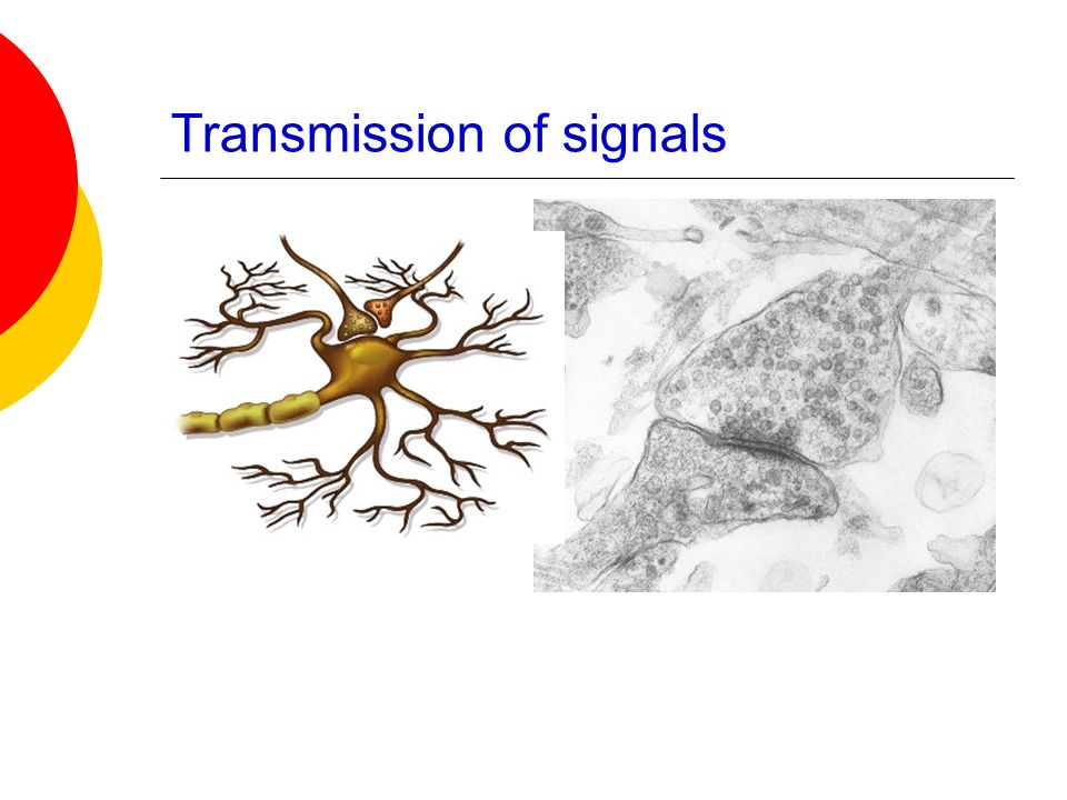 Transmission of signals