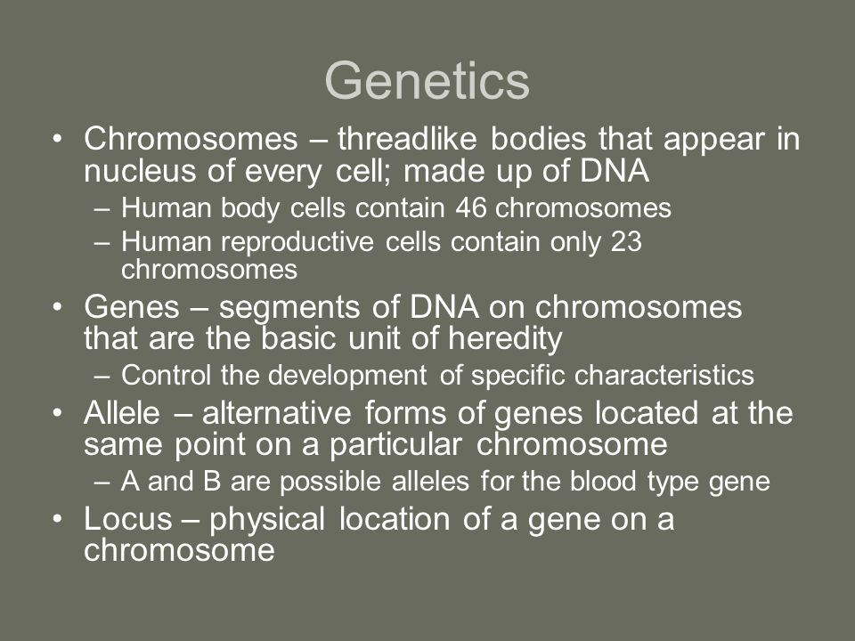 Genetics Chromosomes – threadlike bodies that appear in nucleus of every cell; made up of DNA. Human body cells contain 46 chromosomes.
