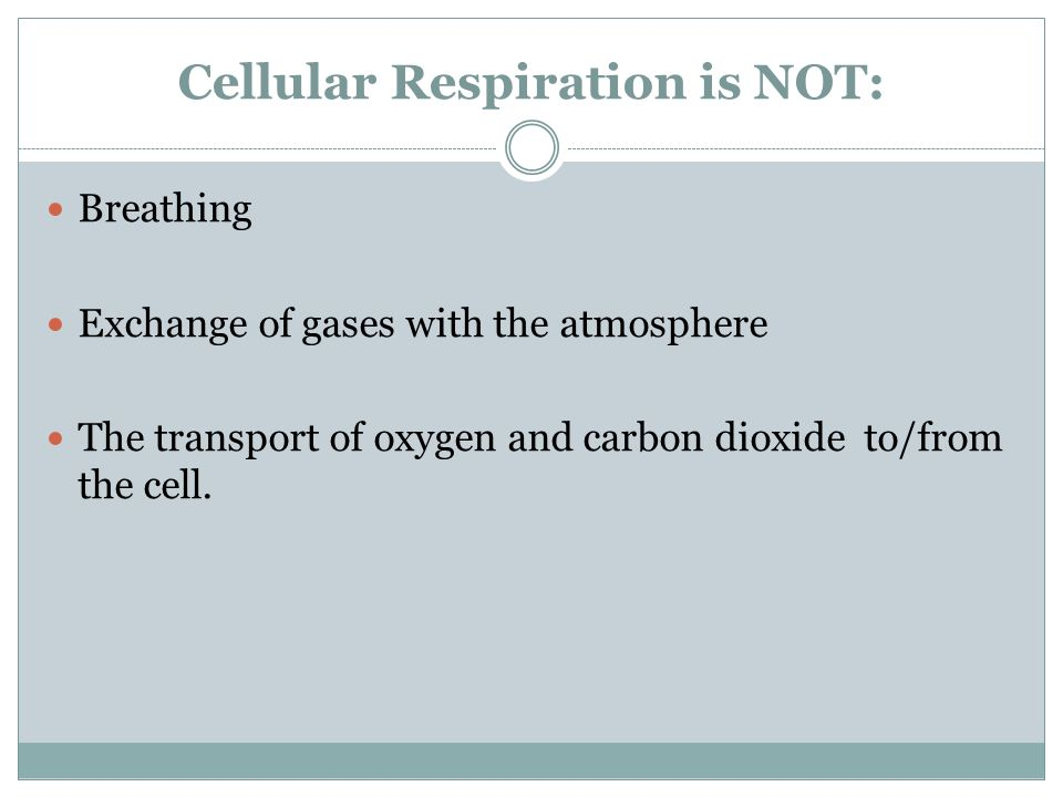 Cellular Respiration is NOT:
