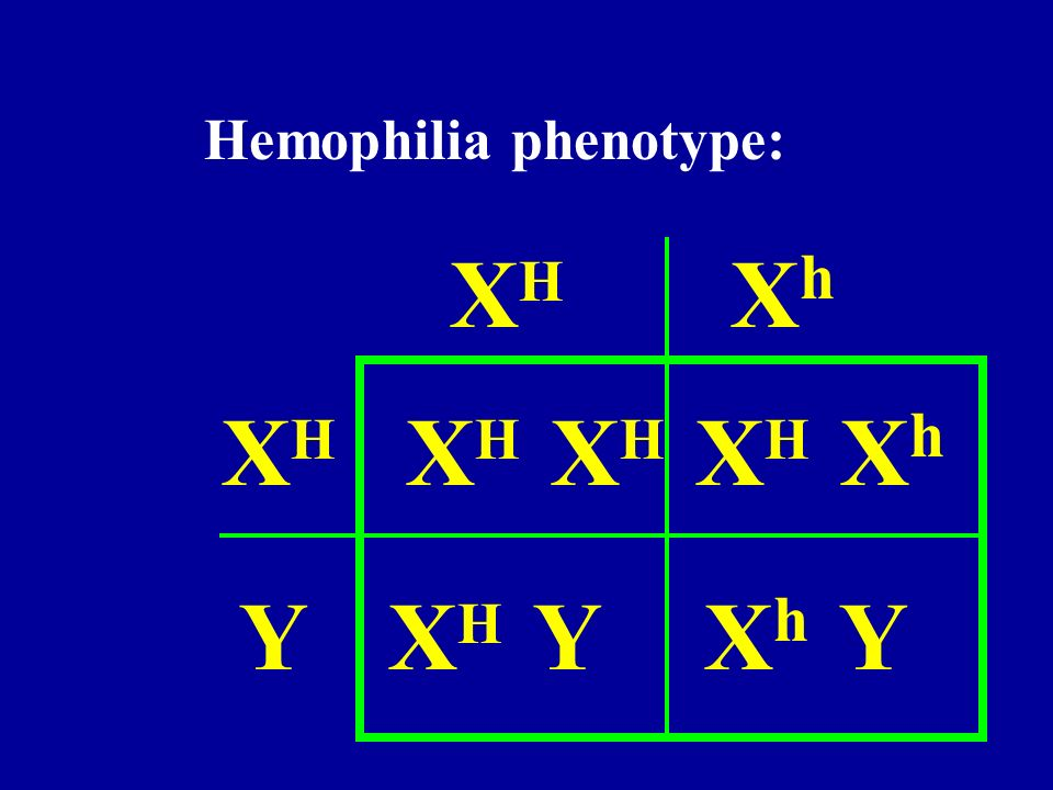 Hemophilia phenotype: