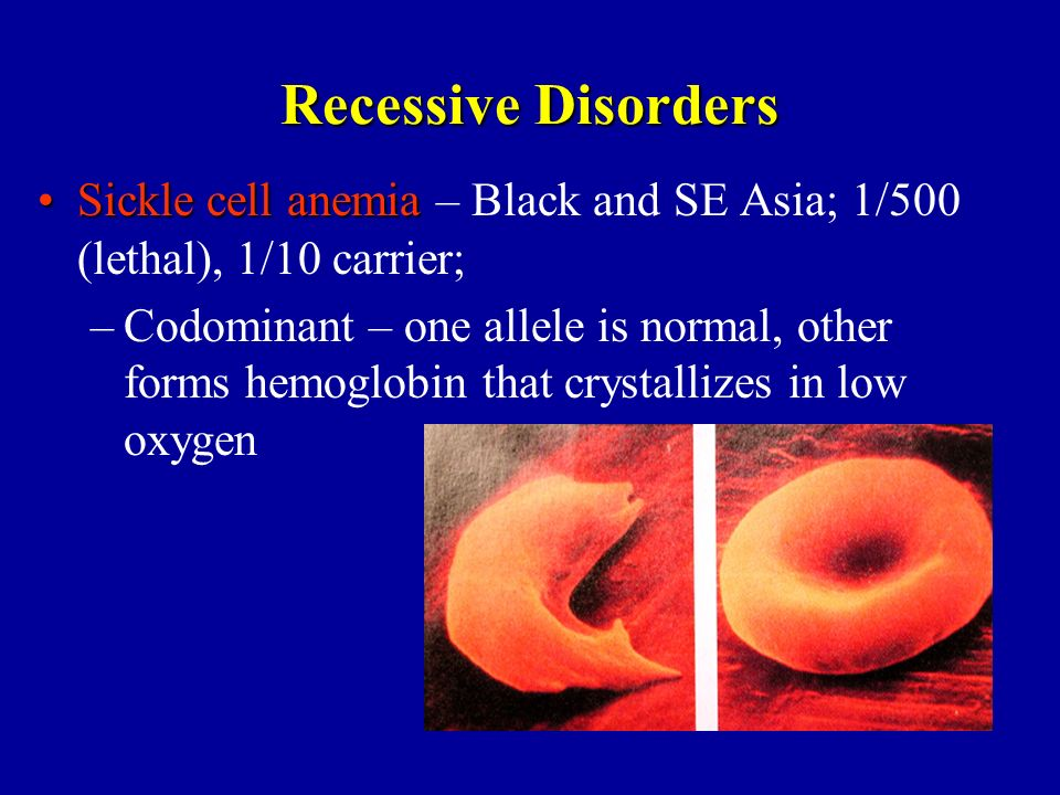 Recessive Disorders Sickle cell anemia – Black and SE Asia; 1/500 (lethal), 1/10 carrier;