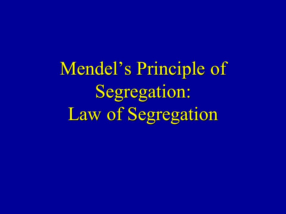 Mendel's Principle of Segregation: Law of Segregation