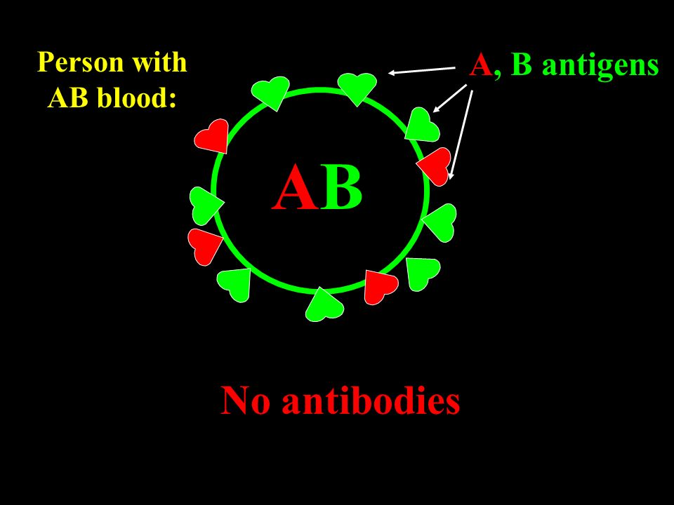 Person with AB blood: A, B antigens AB No antibodies