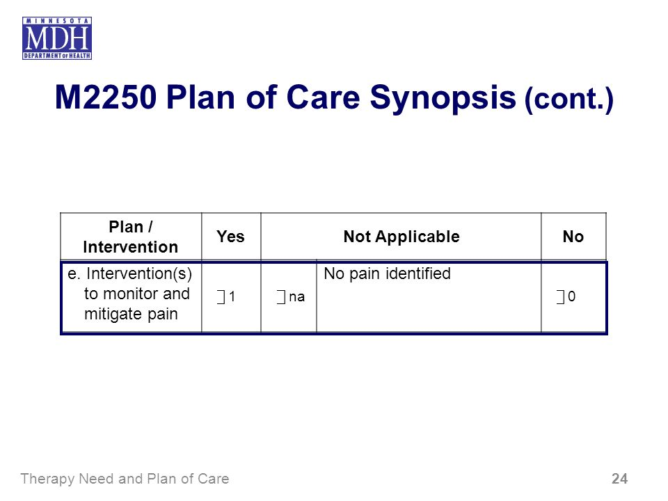 M2250 Plan of Care Synopsis (cont.)