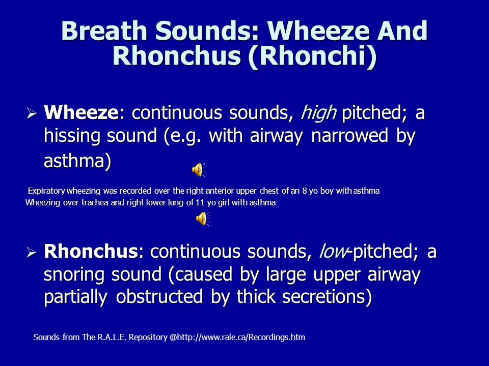 Breath Sounds: Wheeze And Rhonchus (Rhonchi)
