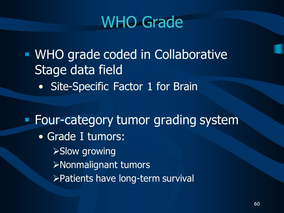 WHO Grade WHO grade coded in Collaborative Stage data field