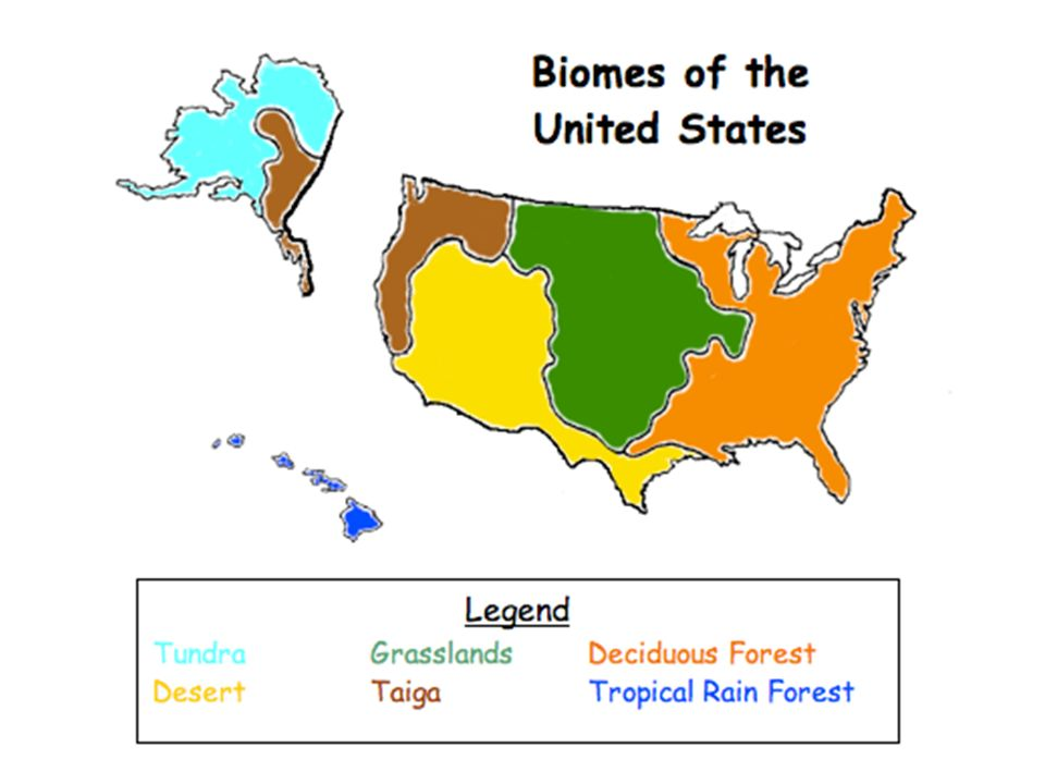 3 biomes of the united states land only