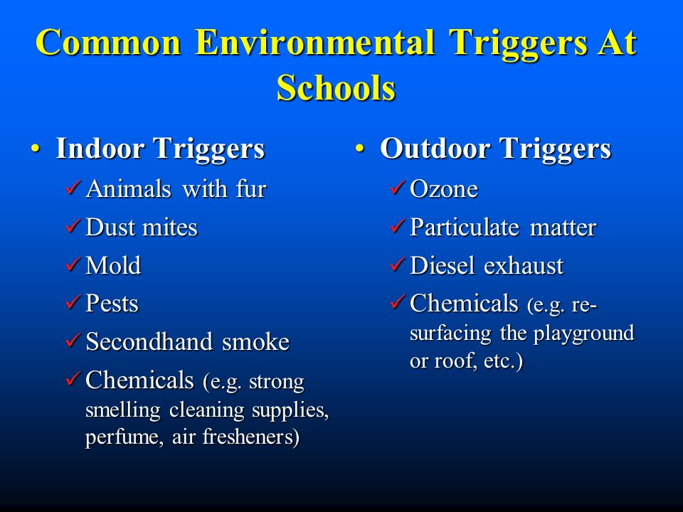 Common Environmental Triggers At Schools