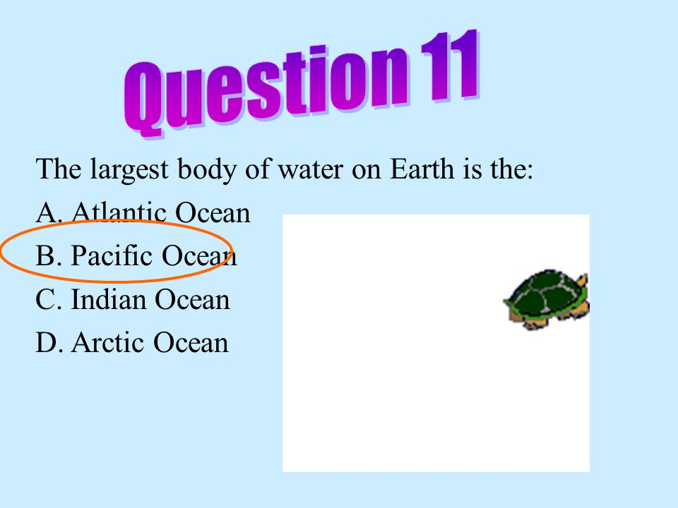 Question 11 The largest body of water on Earth is the: