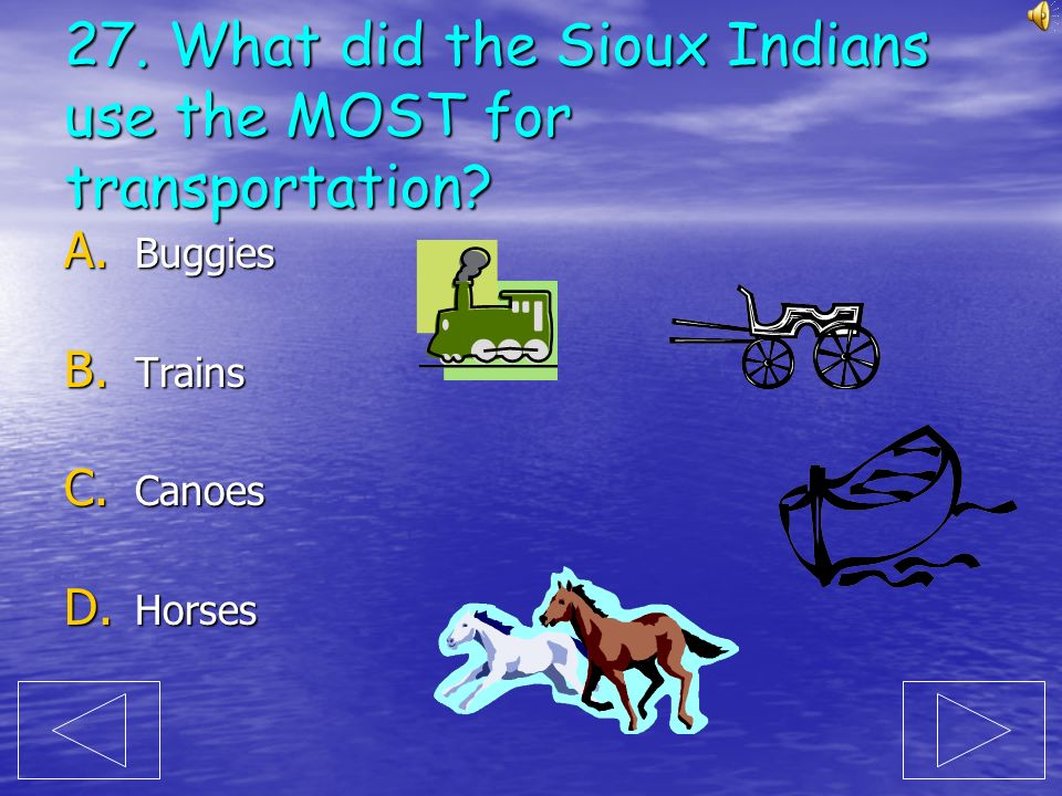 27. What did the Sioux Indians use the MOST for transportation