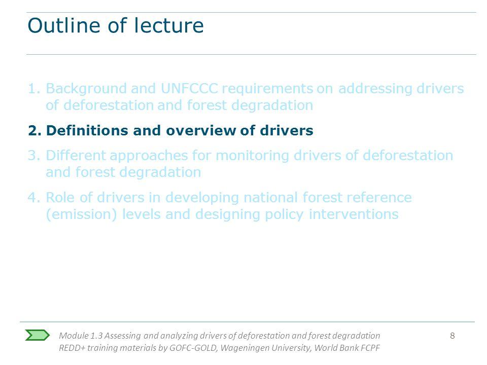 deforestation research paper outline