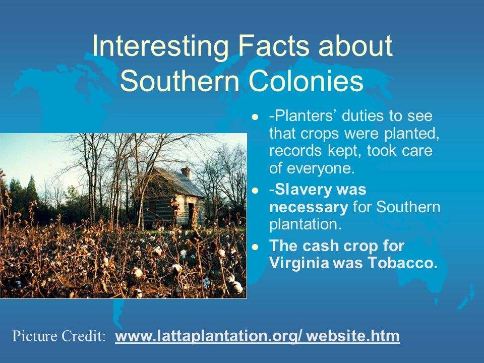 Interesting Facts about Southern Colonies