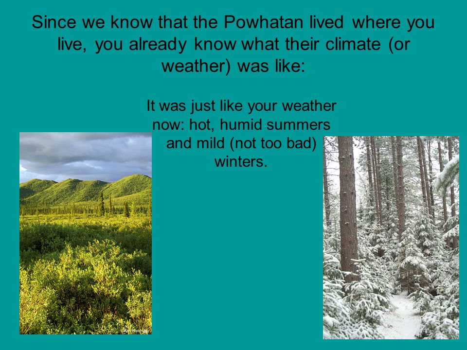 Since we know that the Powhatan lived where you live, you already know what their climate (or weather) was like: