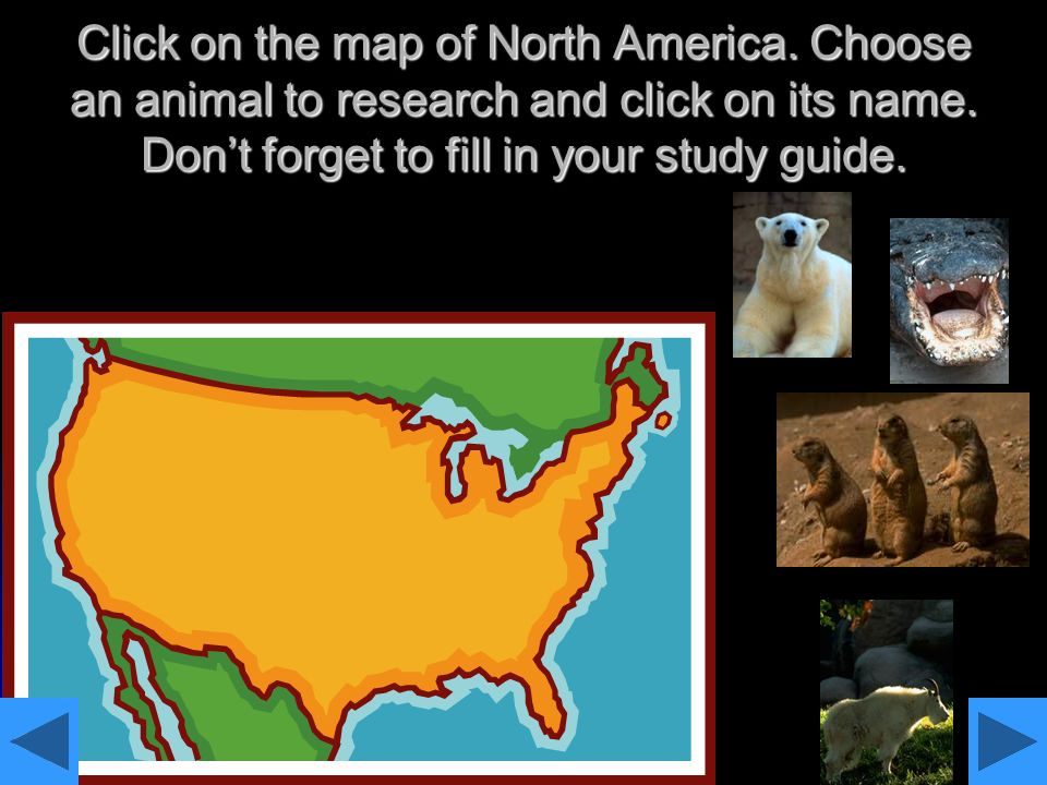 Click on the map of North America