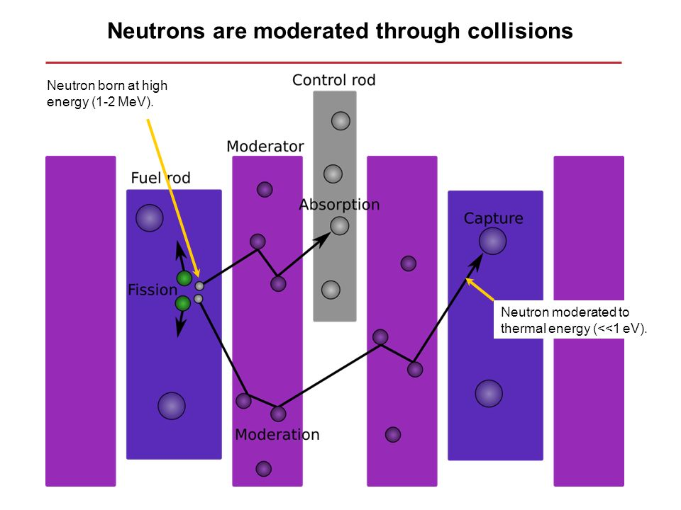 Neutrons are moderated through collisions