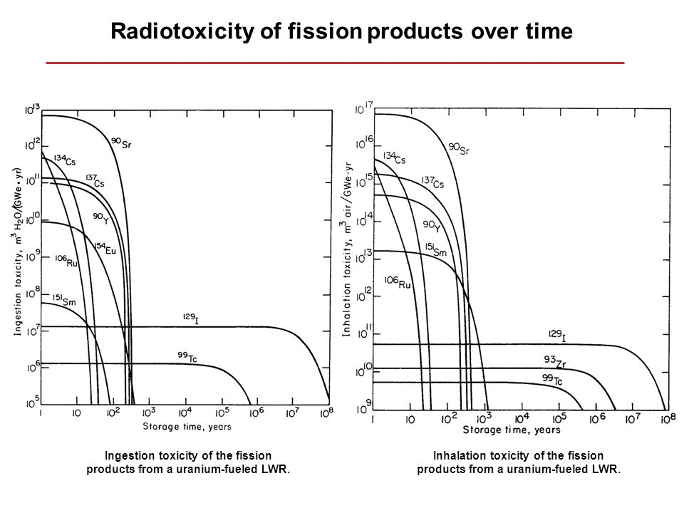 Radiotoxicity of fission products over time