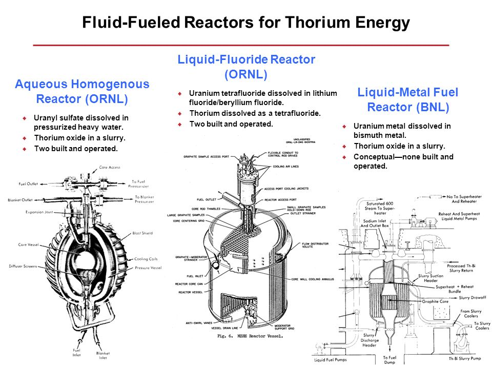 Fluid-Fueled Reactors for Thorium Energy