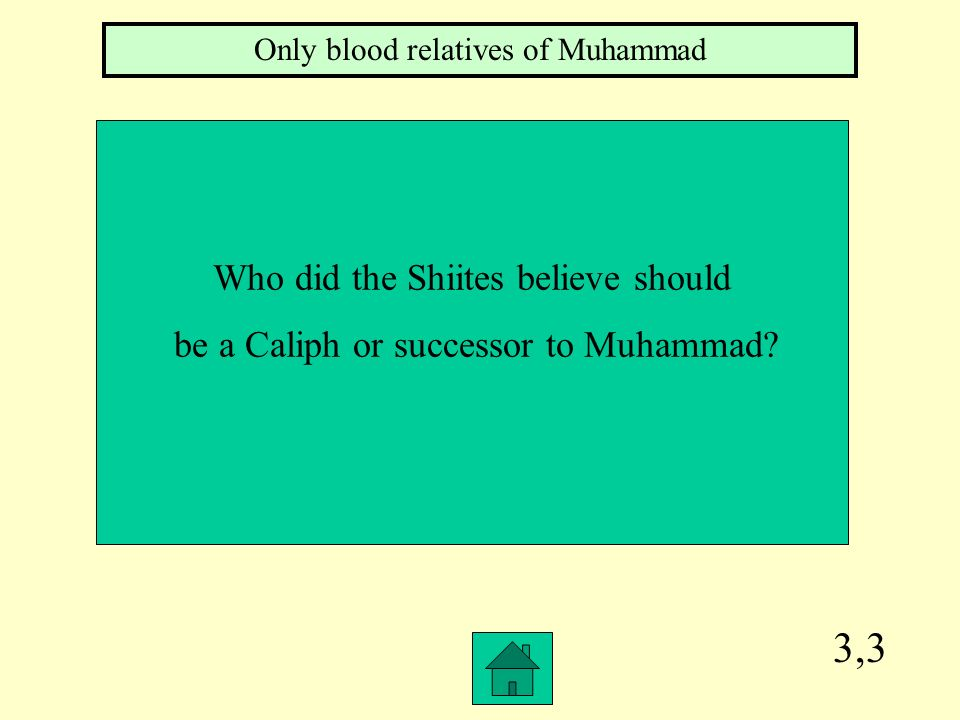 3,3 Who did the Shiites believe should