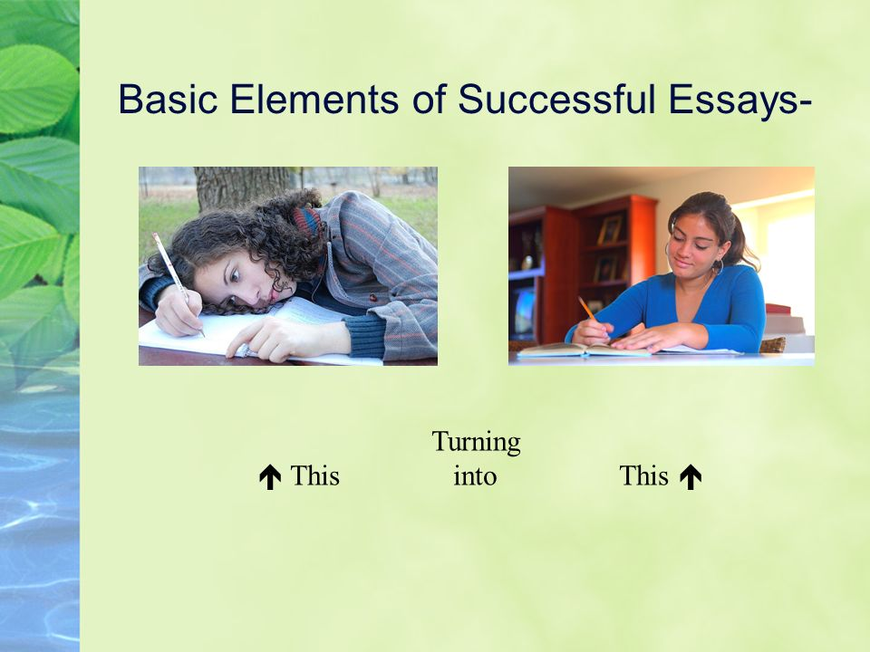 Basic Elements of Successful Essays-