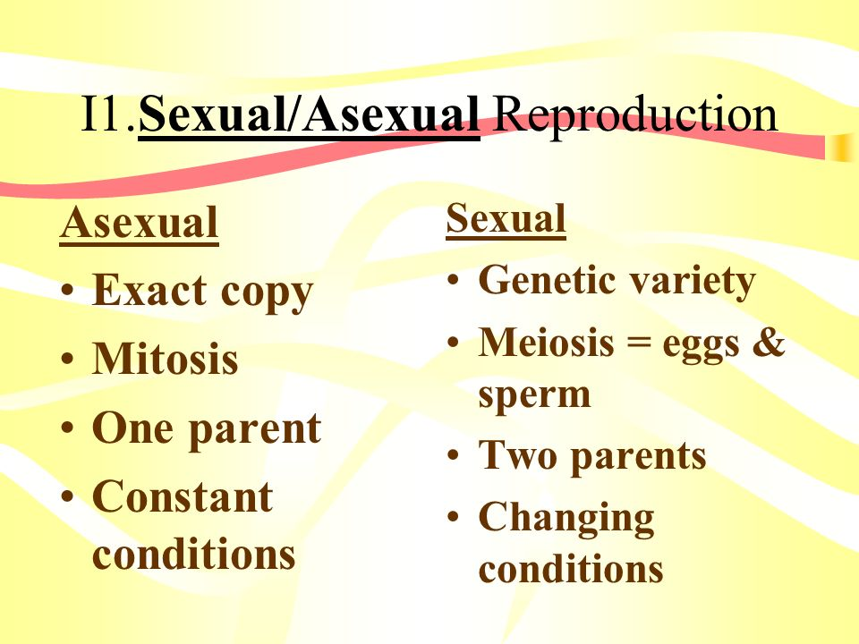 I1.Sexual/Asexual Reproduction