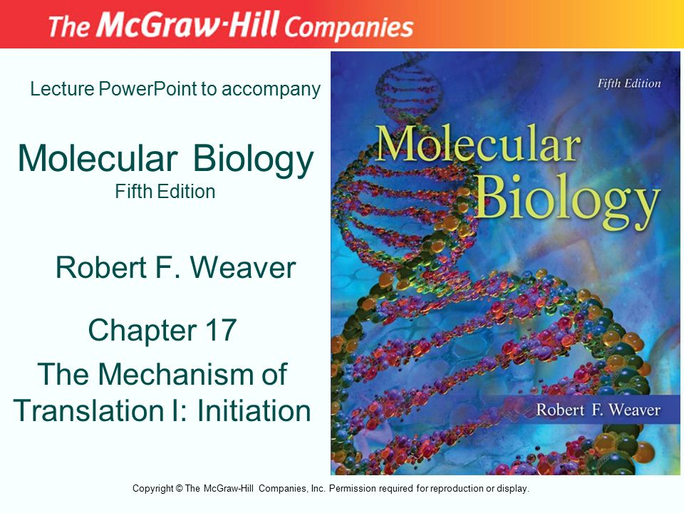 Molecular Biology Weaver Ebook