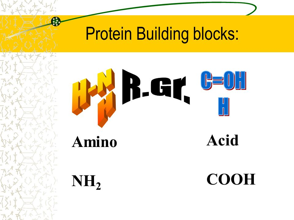 Protein Building blocks: