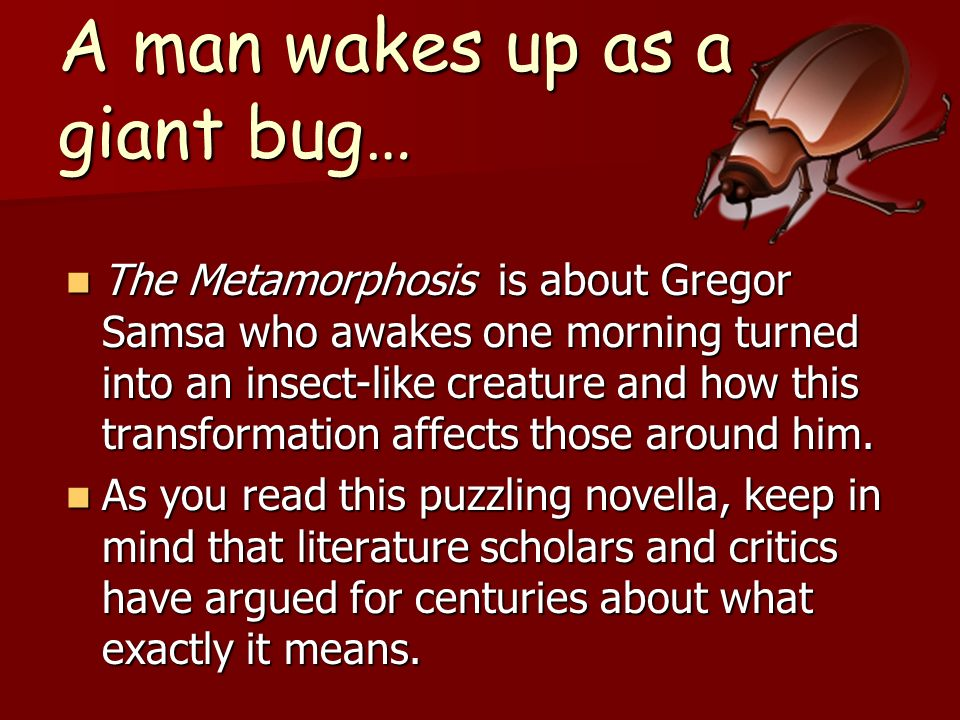 A man wakes up as a giant bug…