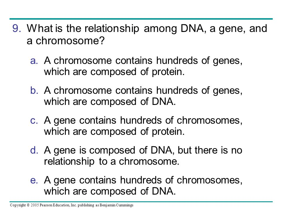 What is the relationship among DNA, a gene, and a chromosome