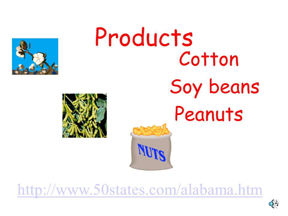 Products Cotton Soy beans Peanuts http://www.50states.com/alabama.htm