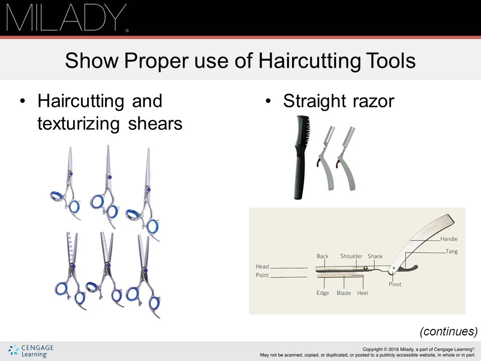 Chapter 16 Haircutting Note This Chapter Of The Instructor Support