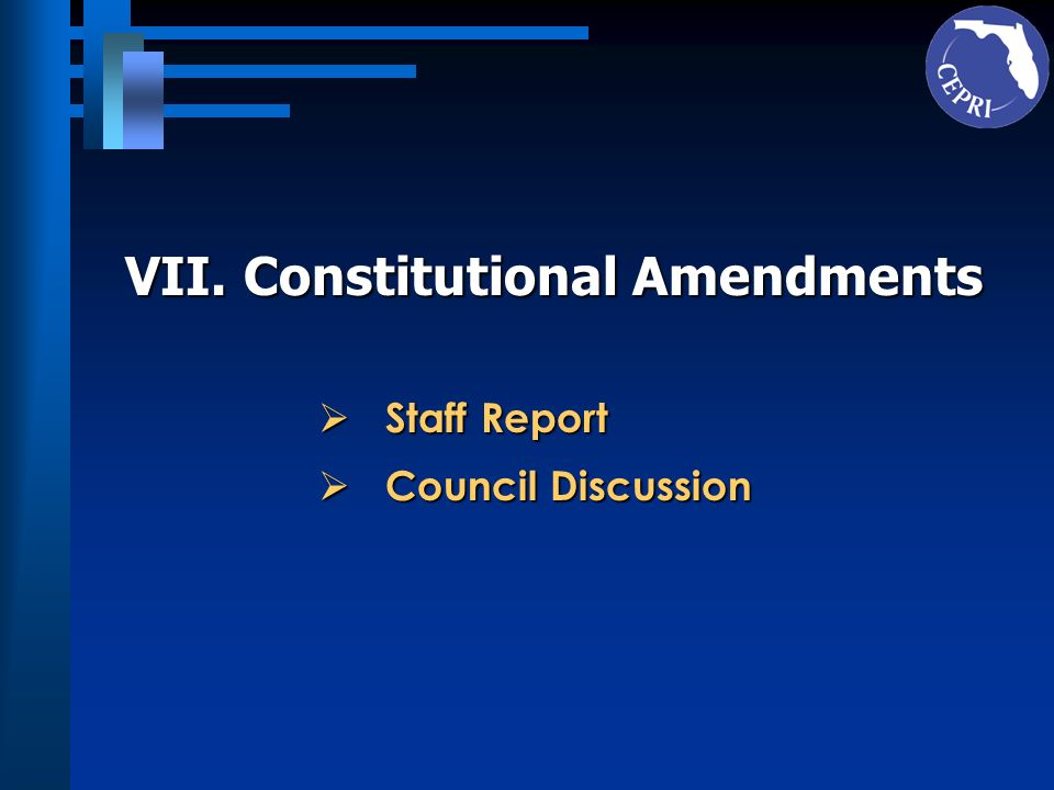 VII. Constitutional Amendments