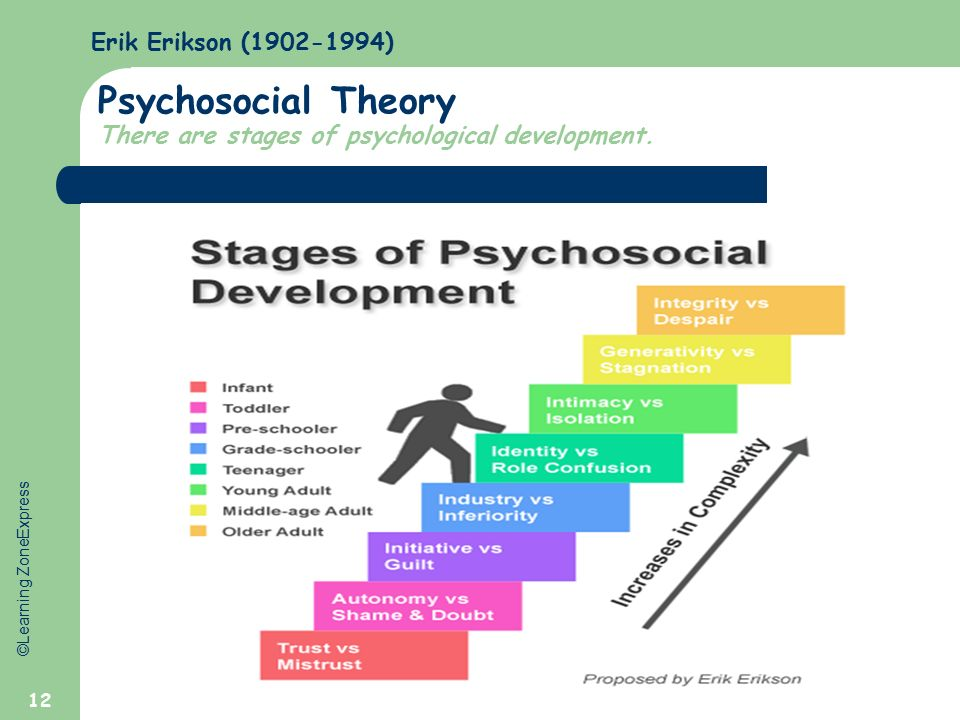 developmental psychology physical cognitive and psychosocial essay The enthusiasm with which children use these devices is evident to any parent, but so far developmental science has been slow to investigate in a detailed manner the relationship between tablet use and cognitive development.