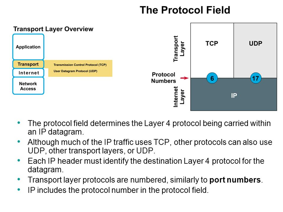 TCP/IP Network, Transport and Application Layers - ppt download