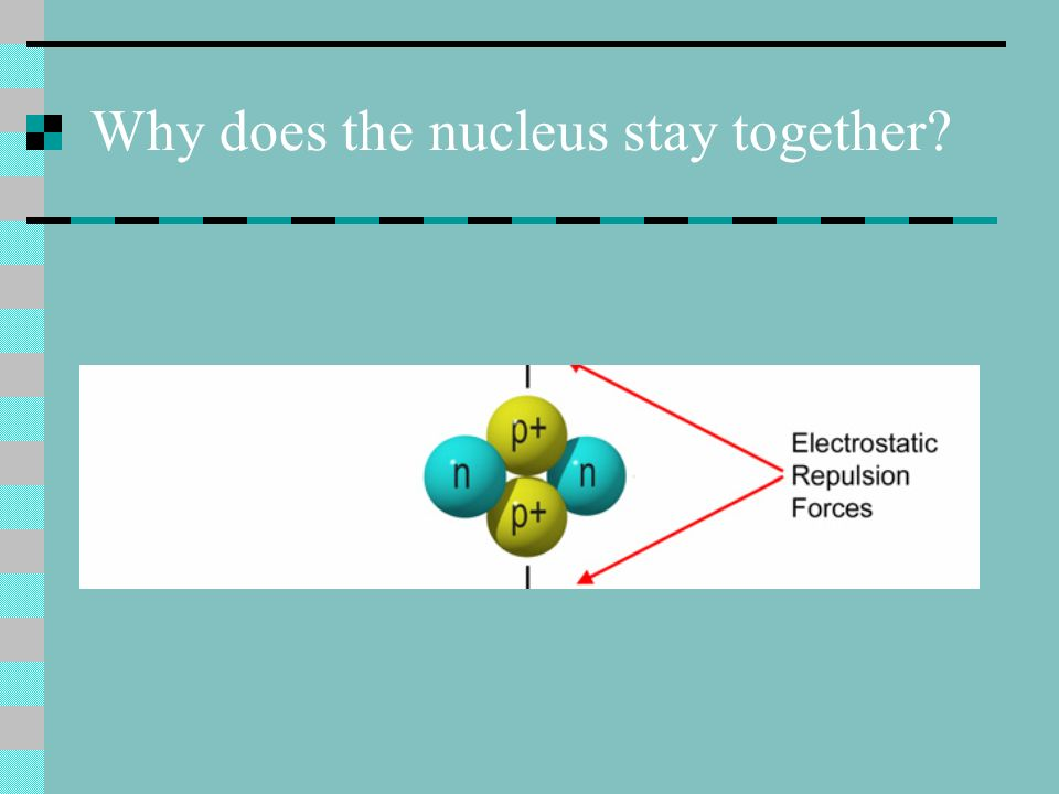 Why does the nucleus stay together