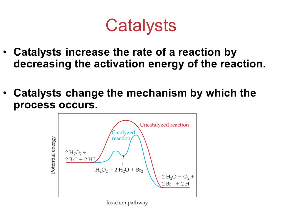 Catalysts Catalysts increase the rate of a reaction by decreasing the activation energy of the reaction.