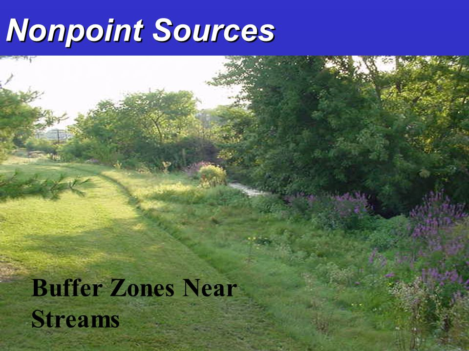Nonpoint Sources Buffer Zones Near Streams