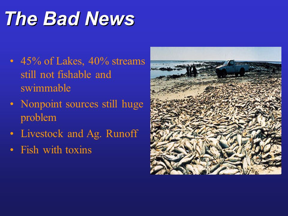 The Bad News 45% of Lakes, 40% streams still not fishable and swimmable. Nonpoint sources still huge problem.